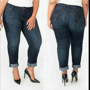 KUT from the KLOTH Jeans Boyfriend Plus Size 24W